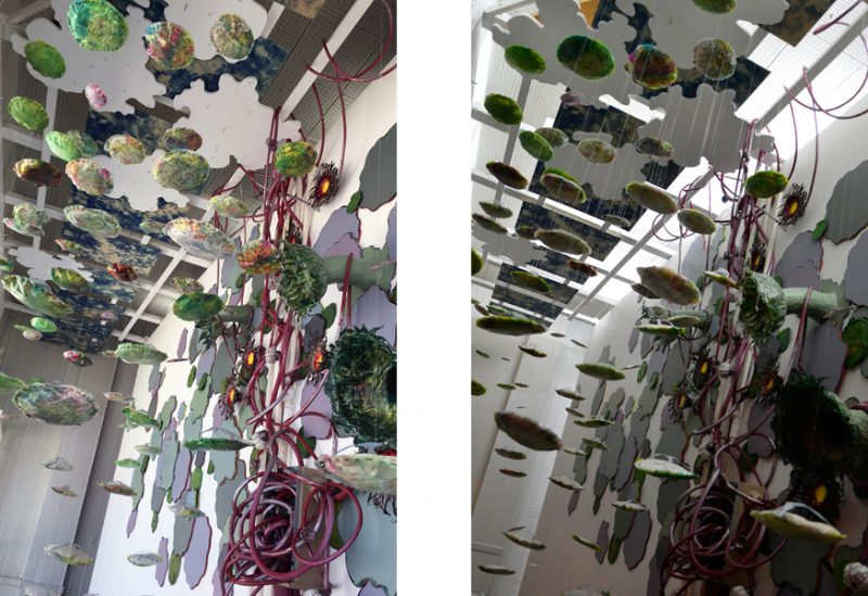 Overhead detail of Dispersal (site-specific art installation) by Laura Latimer