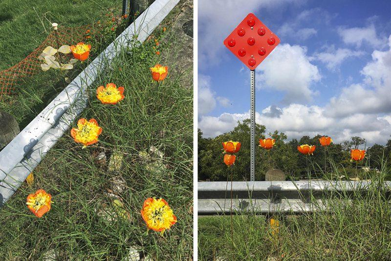 Environmental installation by sculptor Laura Latimer
