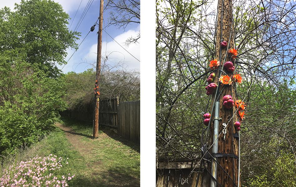 New environmental art intervention by sculptor Laura Latimer, 2021